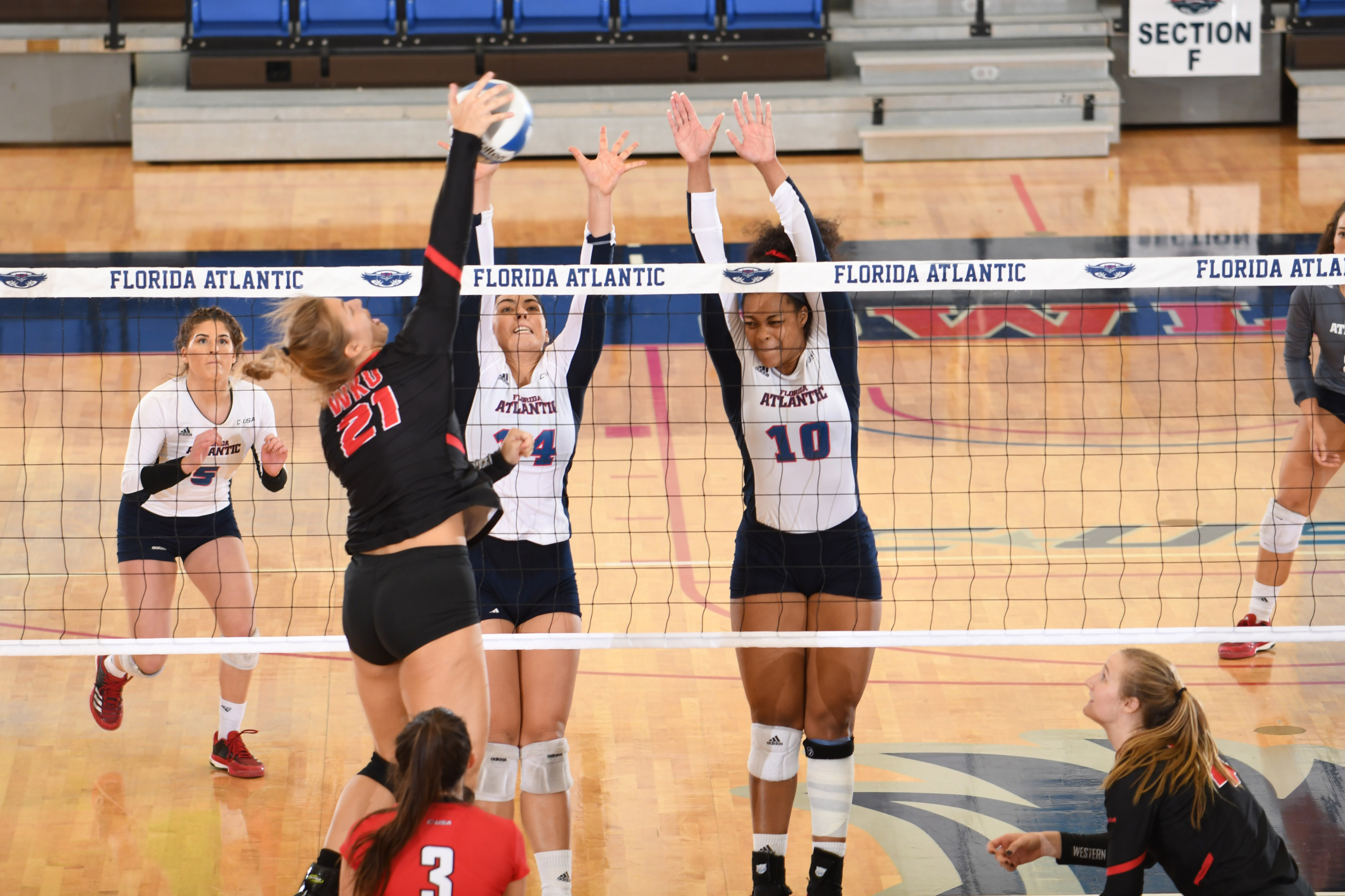 Three Fau Volleyball Players Named Preseason All Conference Florida Atlantic University Athletics